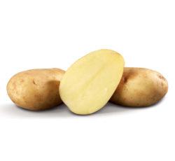 aardappel_bintje_fruitkraam_buttinge