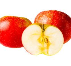 discovery-fruitkraambuttinge